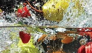 Chlorine Dioxide Veggie Wash