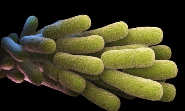 Controlling Legionella Webinar Series Wrap-Up